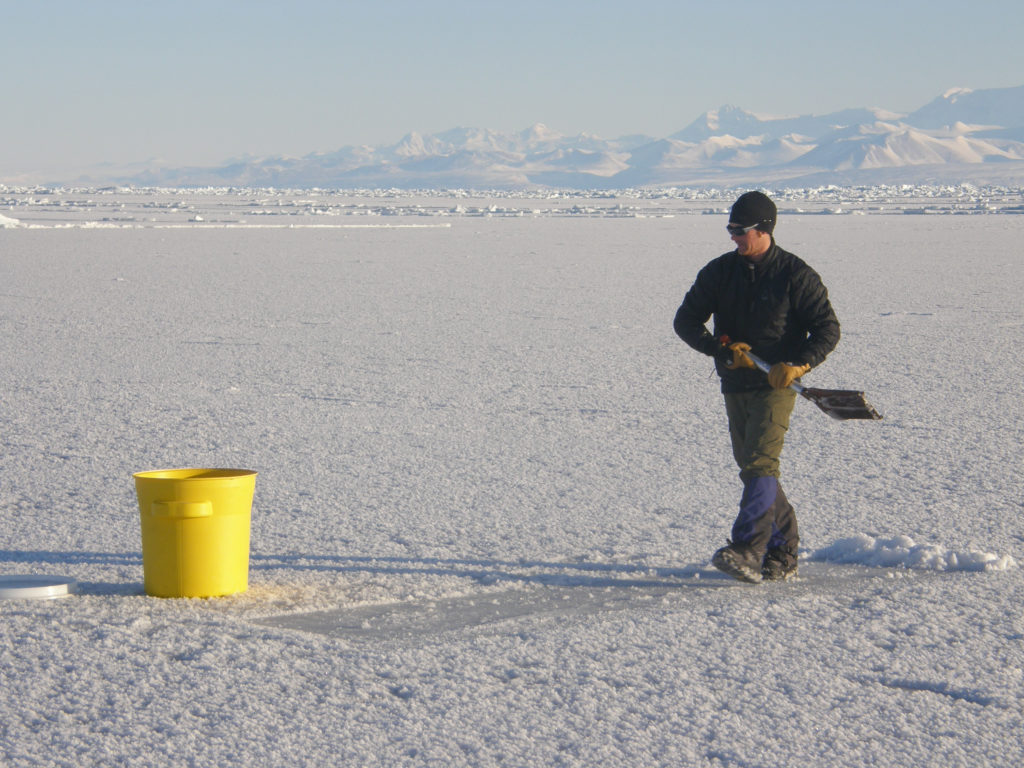 Sampling frost flowers is as easy as scraping them from the ice surface with a clean shovel into a sterile plastic bin.